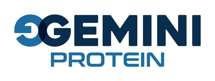 Gemini Proteins Dairy Industry Logo Branding Corporate Identity Design Concept 06