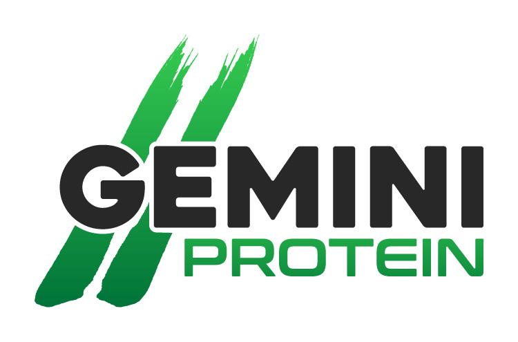 Gemini Proteins Dairy Industry Logo Branding Corporate Identity Design Concept 03