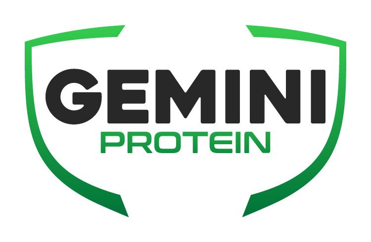 Gemini Proteins Dairy Industry Logo Branding Corporate Identity Design Concept 01