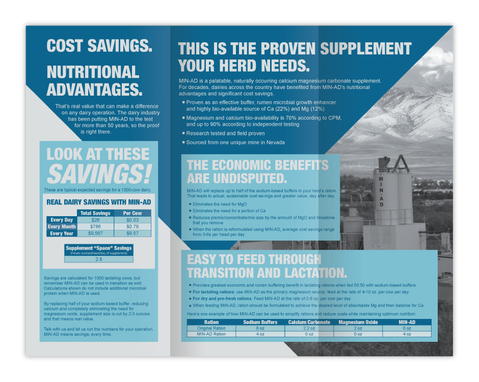 Papillon Feed Efficiently Dairy Industry Min-Ad Brochure Print Design