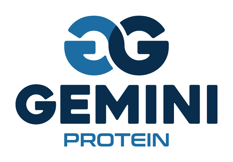 Gemini Proteins Dairy Industry Logo Branding Corporate Identity Design Concept 06