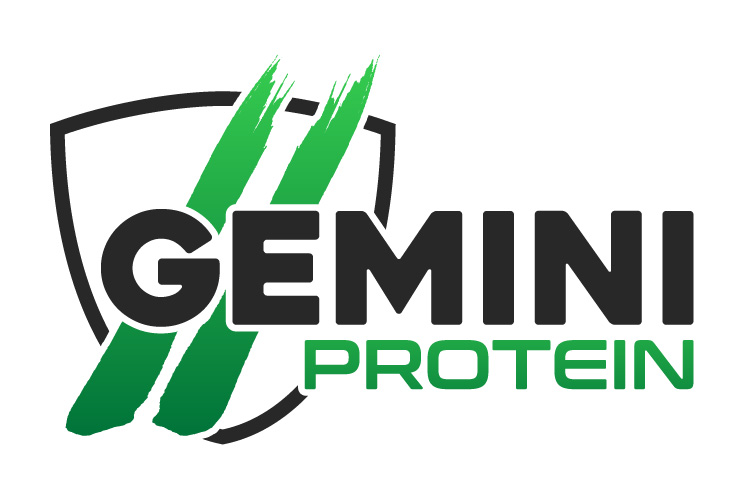 Gemini Proteins Dairy Industry Logo Branding Corporate Identity Design Concept 05