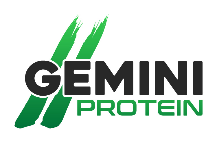 Gemini Proteins Dairy Industry Logo Branding Corporate Identity Design Concept 03