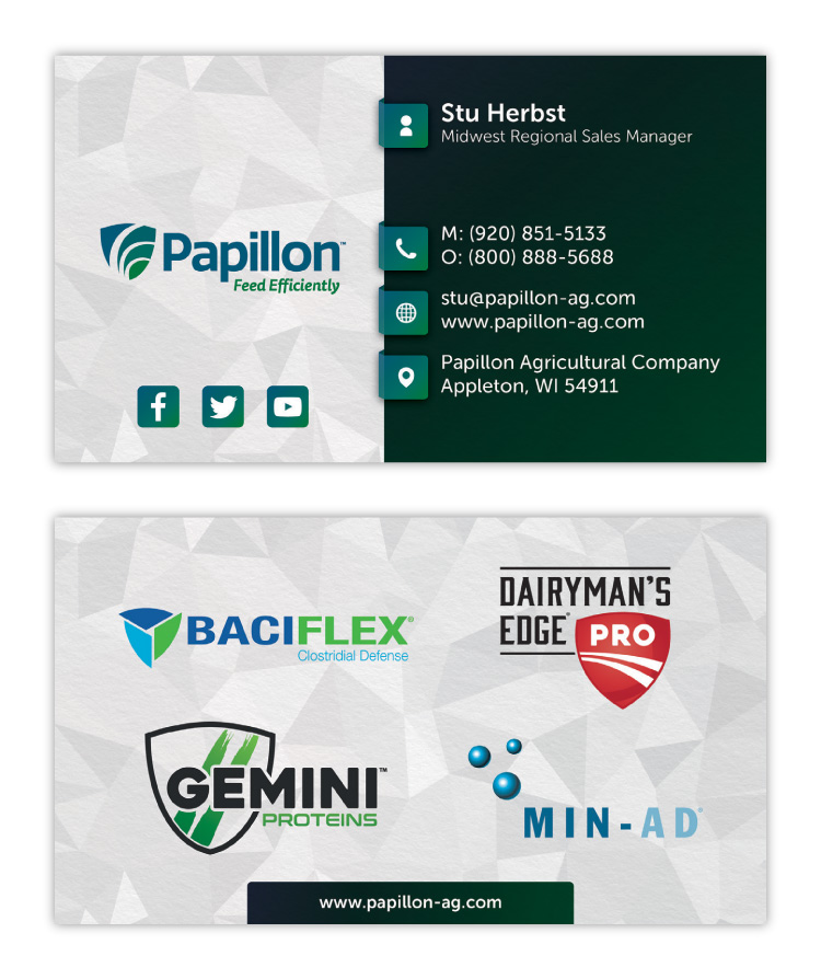 Papillon Feed Efficiently Dairy Industry Corporate Business Card Print Design Concept 01